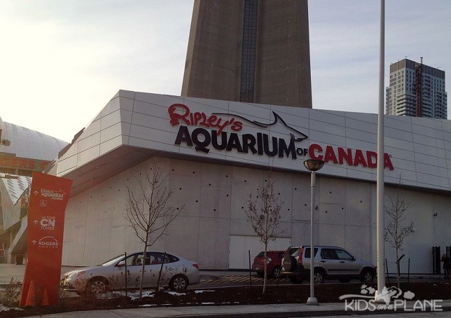 Ripley's Aquarium Toronto Review | KidsOnAPlane.com #aquarium #toronto #canada
